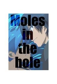 Moles in the hole
