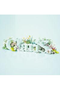 (CD)ClariS ~SINGLE BEST 1st~(初回生産限定盤)(DVD付き)/ClariS