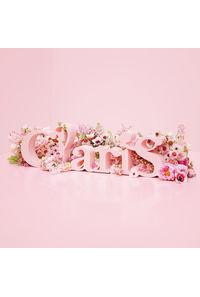 (CD)ClariS ~SINGLE BEST 1st~(通常盤)/ClariS