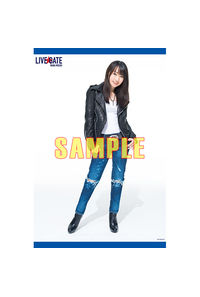 (BD/DVD)NANA MIZUKI LIVE GATE B2タペストリー