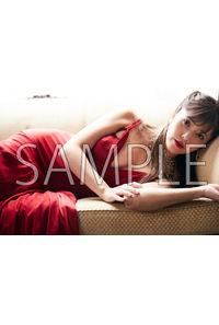 (CD)The Best of Pile(初回限定盤A/B/通常版)/Pileブロマイド
